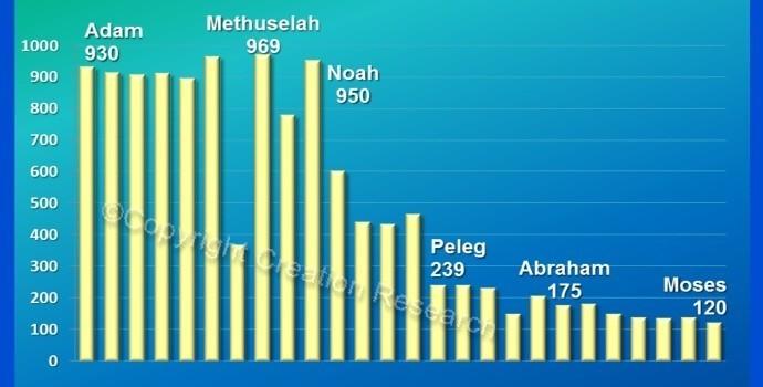 LIFE SPANS: Genesis says Methuselah lived 969 years  Were