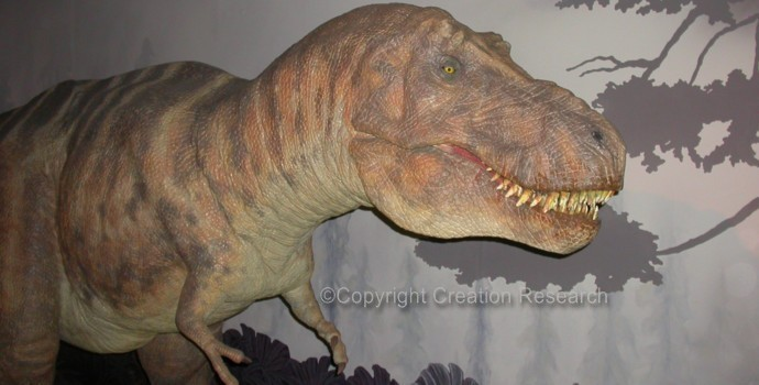 Can carbon dating be used for dinosaurs