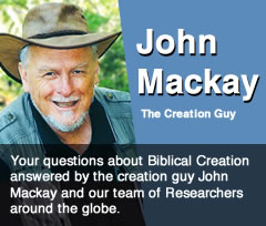 creation research